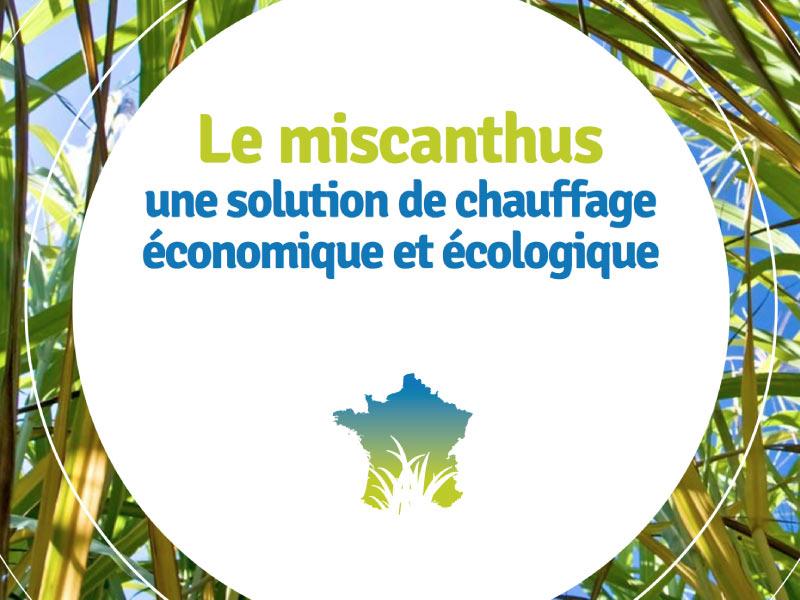 Le Miscanthus : Une Solution De Chauffage écologique Et économique